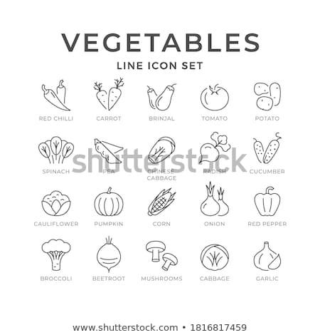 chili pepper line icon stock photo © rastudio