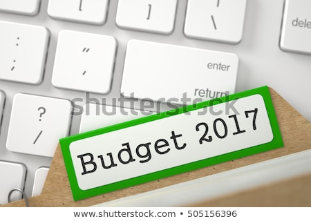 Archive Bookmarks of Card Index with Budget Planning. 3D. Stock photo © tashatuvango