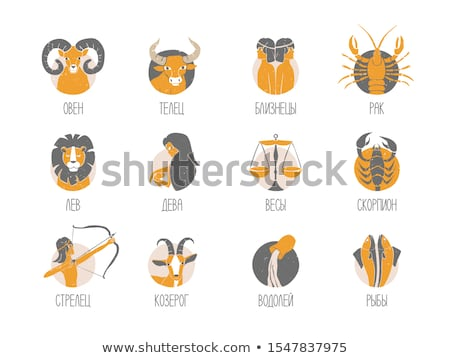 vector illustrations set of zodiac signs stock photo © sonya_illustrations