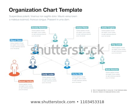 Organization chart infographic, people icon, hierarchy pyramid concept, vector illustration, for pre Stock photo © kyryloff