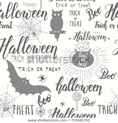Set of spider web and text of holiday halloween Stock photo © orensila