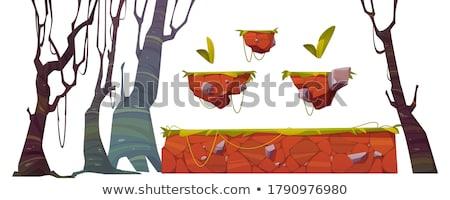 джунгли прыжки игры шаблон иллюстрация воды Сток-фото © bluering