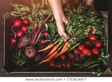 assorted green toned raw organic vegetables in wooden box on dark background avocado cabbage caul stock photo © denismart