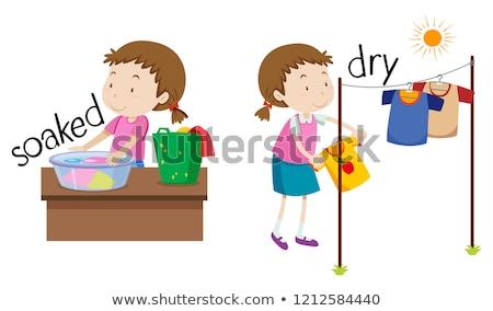Ellenkező szó száraz illusztráció háttér oktatás Stock fotó © bluering