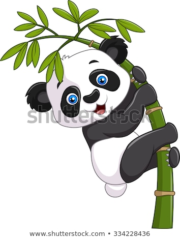 Cartoon Panda Stock photo © cthoman