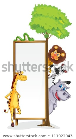wild animals in wooden frame stock photo © bluering