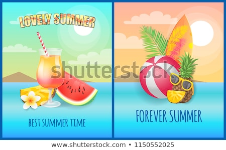 ananas · exotique · juteuse · fruits · vecteur · ensemble - photo stock © robuart
