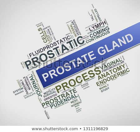 Wordtag wordcloud of prostate gland concept Stock photo © nasirkhan