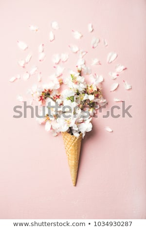 Waffle cone with flowers and sweets on a color background of the year 2019 Living Coral Pantone. Top Stock photo © artjazz