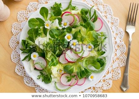 primavera · insalata · selvatico · giovani · commestibile · impianti - foto d'archivio © madeleine_steinbach