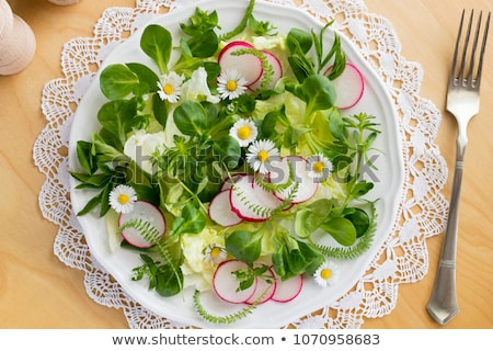 printemps · salade · sauvage · jeunes · comestibles · plantes - photo stock © madeleine_steinbach