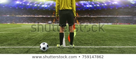 Soccer line referee; football linesman Stock photo © matimix