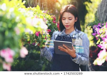 花屋 花 独自の ショップ コンテンツ 魅力的な ストックフォト © pressmaster