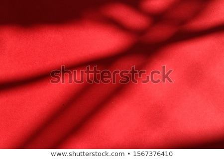 Abstract art, botanical shadows overlay on red background for ho Stock photo © Anneleven