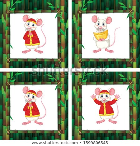 Four different rats in bamboo frames Stock photo © bluering