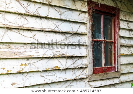 old red chipping wood wall stock photo © nuttakit