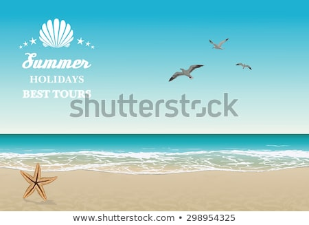 Distant View of summer beach resort Stock photo © lithian