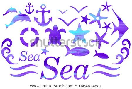 Stock fotó: Kozmetika · ikonok · tengeri · ábrázat · smink · szerszámok