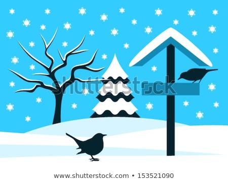 Blackbird oiseau table anglais hiver Photo stock © suerob