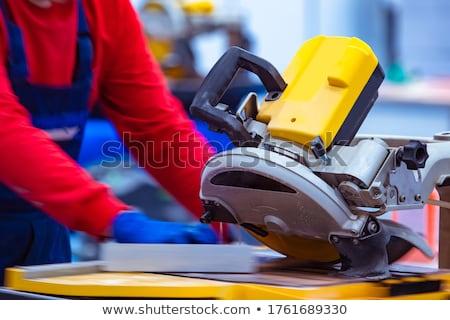 Mason pracy budynku niebieski przemysłu pracownika Zdjęcia stock © photography33