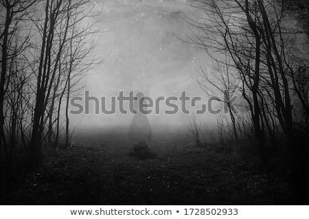 Ghostly Woman Stock photo © piedmontphoto