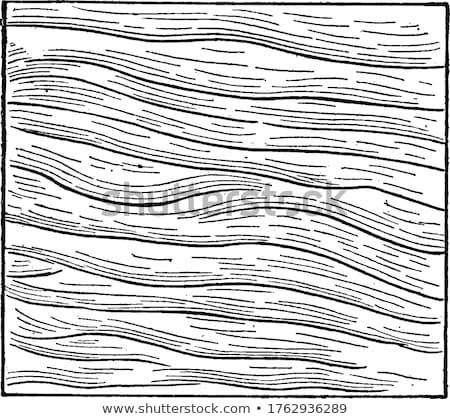 砂 興味深い リップル パターン 砂漠 自然 ストックフォト © jkraft5