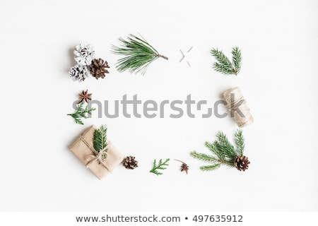 Stock photo: fir tree branch,  decorations and gift box