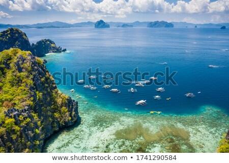 Big lagoon entrance Stock photo © smithore