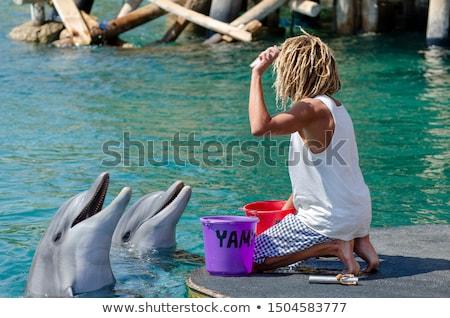 Delfin férfi előad előadás víz utazás Stock fotó © HASLOO