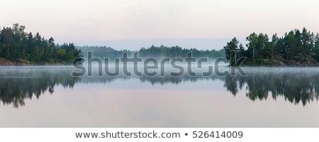 Mooie boom meer reflectie artistiek water Stockfoto © Lizard