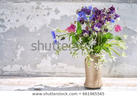 bethlehem from wood and corn leaves  Stock photo © jonnysek
