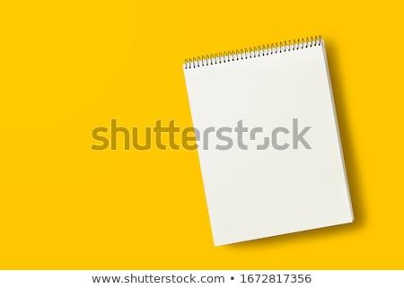 Programozós ír jegyzetek papír női darab Stock fotó © stevanovicigor