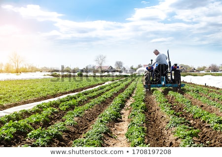 cultivator stock photo © uatp1