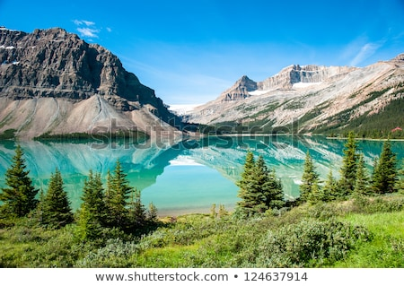 Icefields Parkway in Canadian Rocky Mountains Stock photo © eddygaleotti