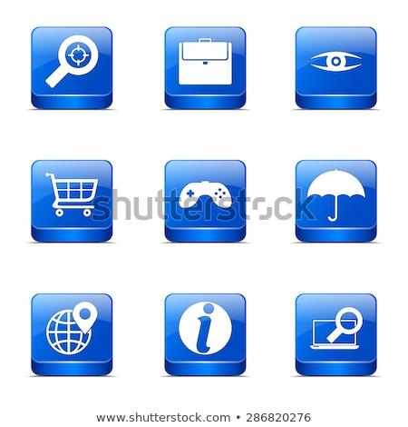 seo internet sign square vector blue icon design set 10 stock photo © rizwanali3d