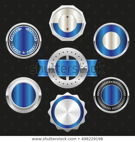 Garantia garantir selar azul vetor botão Foto stock © rizwanali3d