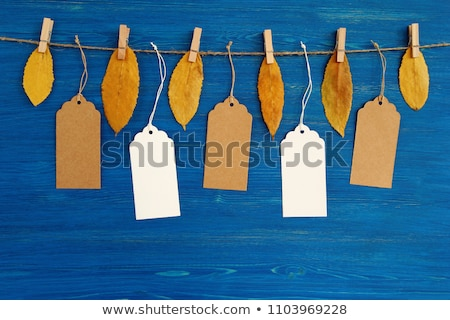 price tag from with twine on dry autumn leaves background stock photo © stevanovicigor