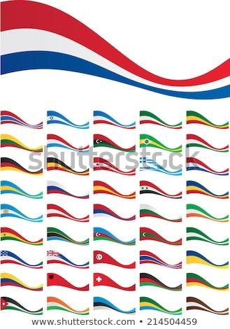 Brezilya Gabon bayraklar bilmece yalıtılmış beyaz Stok fotoğraf © Istanbul2009