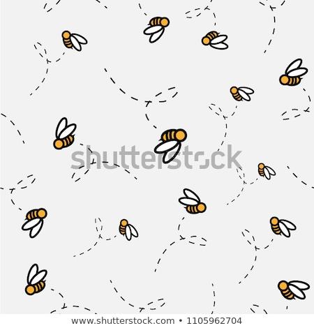 little bee flying on white background stock photo © bluering