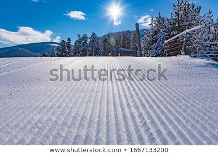 Urmări model fundal iarnă schi Imagine de stoc © naumoid