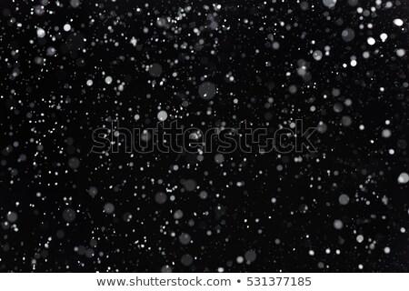 igazi · fagy · jeges · hó · természetes · jég - stock fotó © taiga