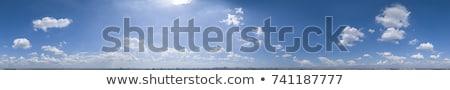 spherical panorama landscape stock photo © butenkow