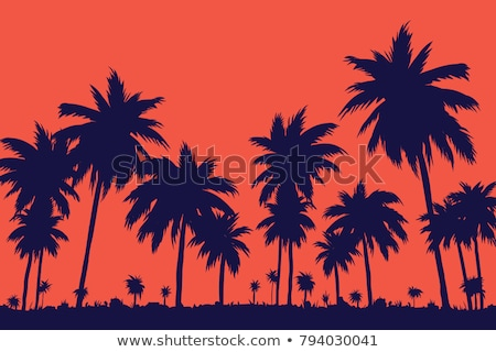 Stock photo: silhouette of palms at sunset