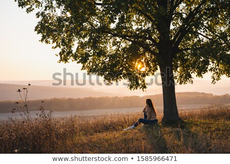 woman sitting in garden Stock photo © IS2