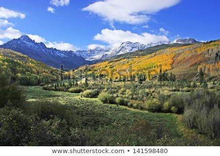 Колорадо горные ручей небольшой быстро Сток-фото © pancaketom