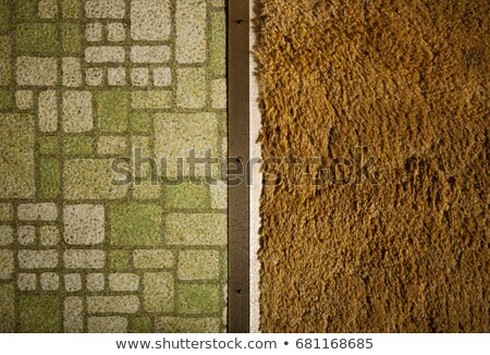 Overhead view of linoleum floor and rug Stock photo © IS2