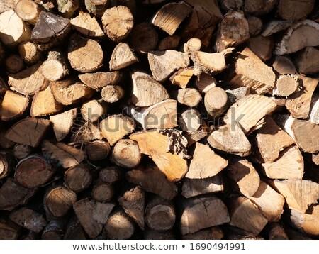 Stock fotó: Tűzifa · nap · sugarak · aprított · fenyőfa · köteg