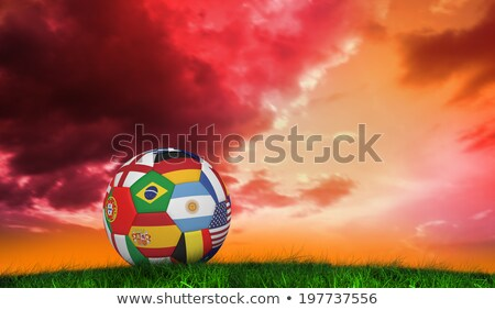 Football in multi national colours against grass Stock photo © wavebreak_media