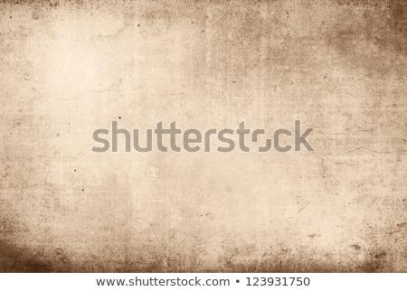 Large Grunge Textures Backgrounds ストックフォト © ilolab