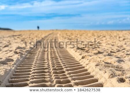 beach sand footprint human and tyres stock photo © lunamarina